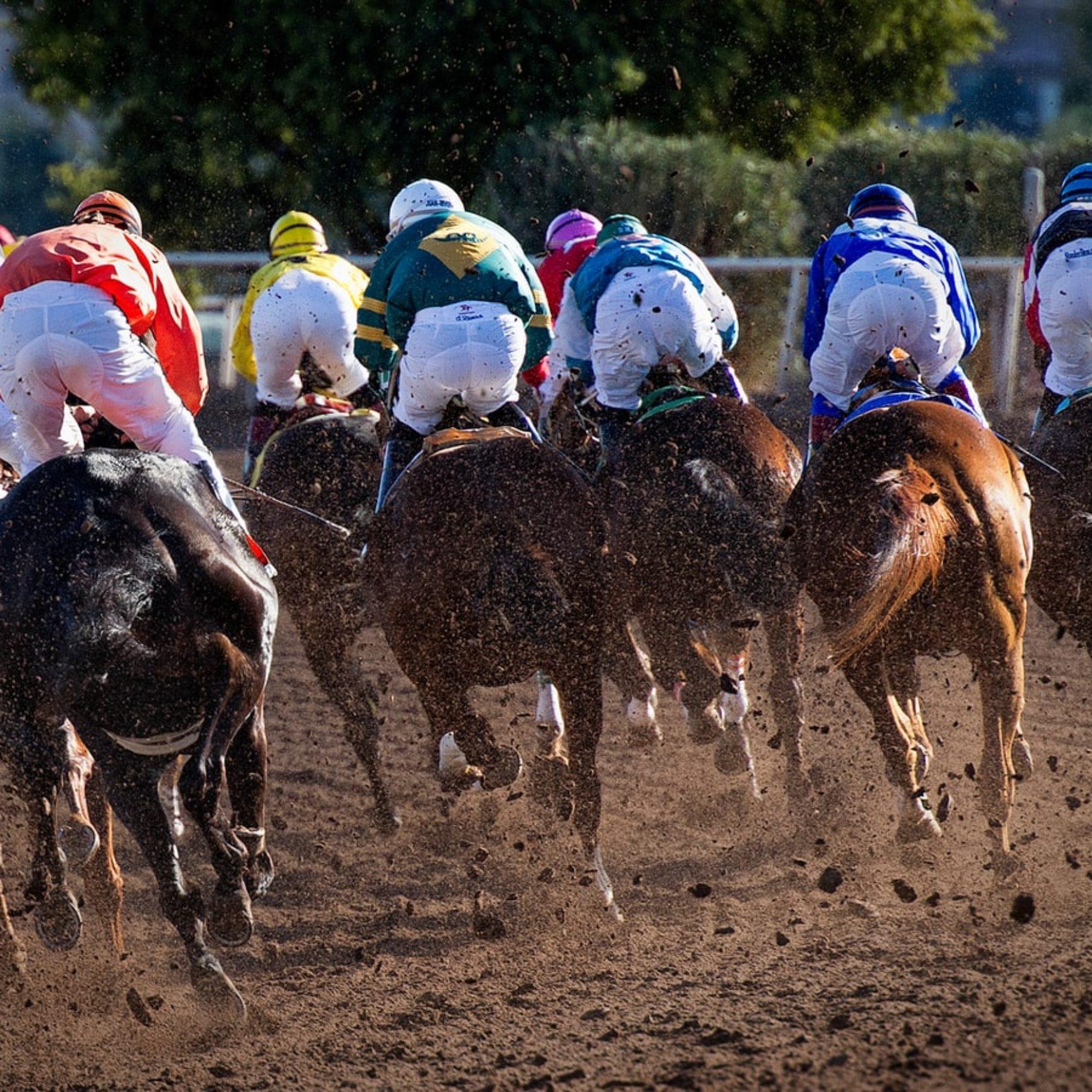 Jubileusz firmy z tematyką rodeo